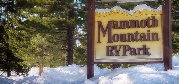 Mammoth mountain rv park campground offers year round for Mammoth mountain cabins pet friendly